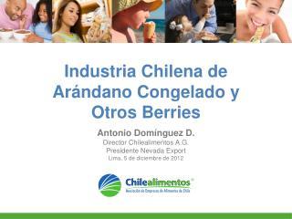 Industria Chilena de Arándano Congelado y Otros Berries
