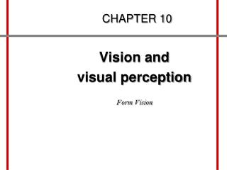Vision and  visual perception  Form Vision