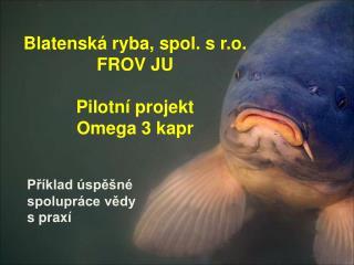 Blatenská ryba, spol. s r.o. FROV JU Pilotní projekt  Omega 3 kapr