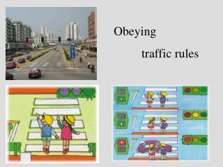 Obeying           traffic rules