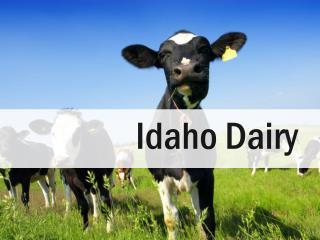 Idaho  Dairy