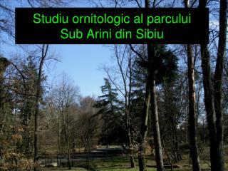 Studiu ornitologic al parcului  Sub Arini din Sibiu