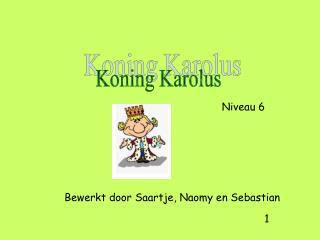 Bewerkt door Saartje, Naomy en Sebastian