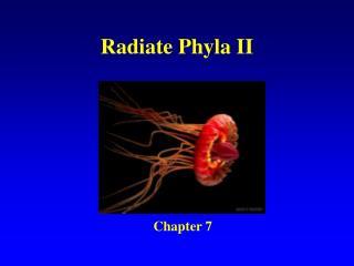 Radiate Phyla II