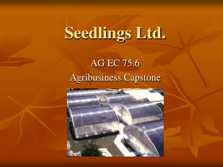 Seedlings Ltd.