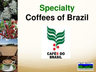 Specialty Coffees of Brazil