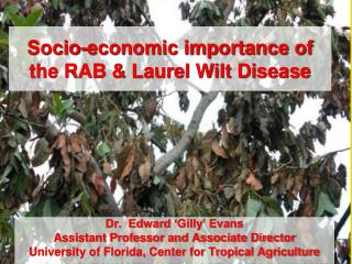 Socio-economic importance of the RAB & Laurel Wilt Disease