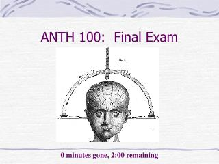 ANTH 100:  Final Exam