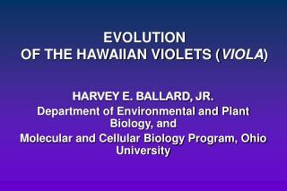 EVOLUTION OF THE HAWAIIAN VIOLETS ( VIOLA )