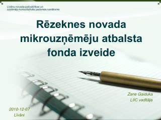 Rēzeknes novada mikrouzņēmēju atbalsta fonda izveide
