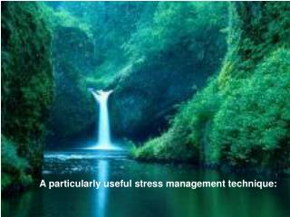 A particularly useful stress management technique: