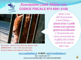 canilimilano.it   E-MAIL   info@canilimilano.it