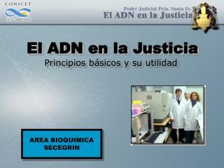 El ADN en la Justicia Principios básicos y su utilidad