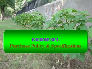 BIODIESEL Purchase Policy & Specifications