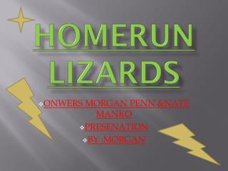 HOMERUN LIZARDS