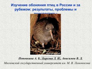 Изучение обоняния птиц в России и за рубежом: результаты, проблемы и перспективы