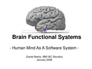 Brain Functional Systems