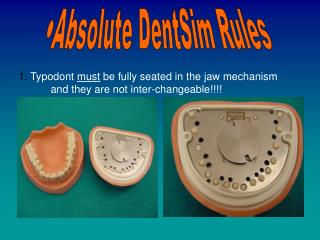 Absolute DentSim Rules