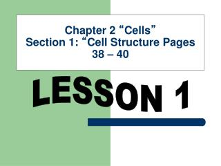 Chapter 2  � Cells � Section 1:  � Cell Structure Pages 38 � 40