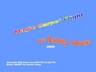 Magic Carpet Flight