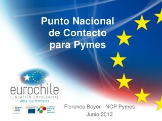 Punto Nacional de Contacto para Pymes