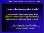 Carlos Augusto de Lemos Chernicharo Departamento de Engenharia Sanit ria e Ambiental Escola de Engenharia da UFMG