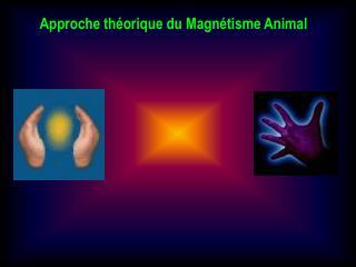 Approche théorique du Magnétisme Animal