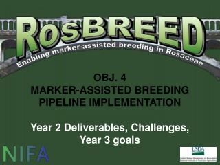 OBJ. 4 MARKER-ASSISTED BREEDING PIPELINE IMPLEMENTATION