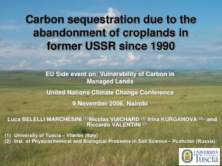 Carbon sequestration due to the abandonment of croplands in former USSR since 1990