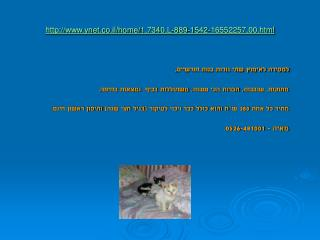 ynet.co.il/home/1,7340,L-889-1542-16552257,00.html
