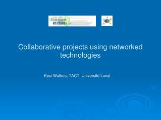 Collaborative projects using networked technologies
