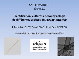 ANR COMANCHE Tâche 5.2 Identification, cultures et écophysiologie