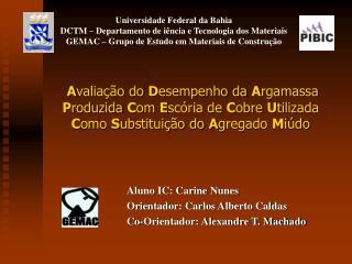 Aluno IC: Carine Nunes Orientador: Carlos Alberto Caldas Co-Orientador: Alexandre T. Machado