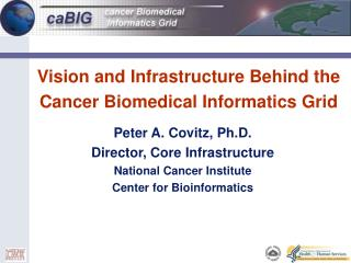 Vision and Infrastructure Behind the  Cancer Biomedical Informatics Grid