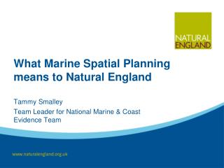 What Marine Spatial Planning means to Natural England
