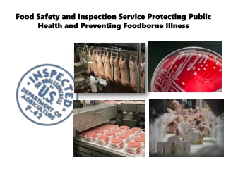 Food Safety and Inspection Service FSIS