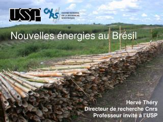 Hervé Théry Directeur de recherche Cnrs Professeur invité à l'USP