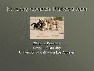 Nurturing research: It takes a team