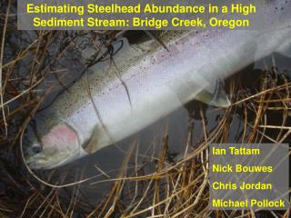 Estimating Steelhead Abundance in a High Sediment Stream: Bridge Creek, Oregon