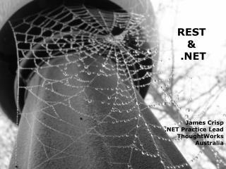 REST  &  .NET