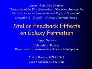 Stellar Feedback Effects on Galaxy Formation