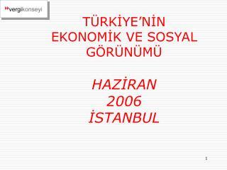 TÜRKİYE'NİN  EKONOMİK VE SOSYAL GÖRÜNÜMÜ HAZİRAN 2006 İSTANBUL