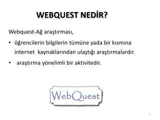 WEBQUEST NEDİR?