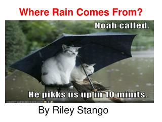 Where Rain Comes From?
