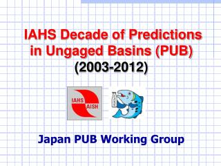 IAHS Decade of Predictions in Ungaged Basins (PUB) (2003-2012) Japan PUB Working Group