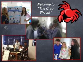 Welcome to  � The Crab Shack! �