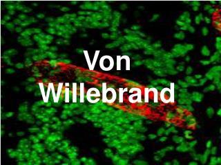 Von Willebrand