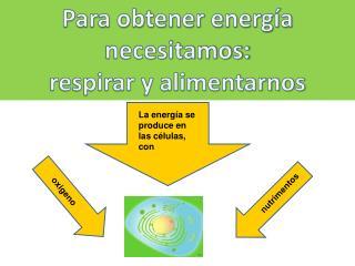 Para obtener energía  necesitamos: respirar y alimentarnos