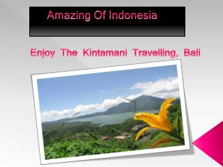 Amazing  Of Indonesia