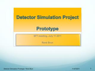Detector Simulation Project Prototype